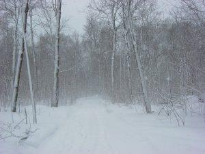 snow-20377_960_720